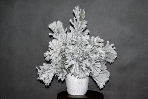 Kompozucja świąteczna w donicy śnieżona